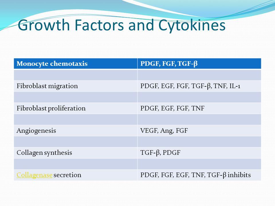 Growth Factors and Cytokines Monocyte chemotaxisPDGF, FGF, TGF-β Fibroblast migrationPDGF, EGF, FGF, TGF-β, TNF, IL-1 Fibroblast proliferationPDGF, EG