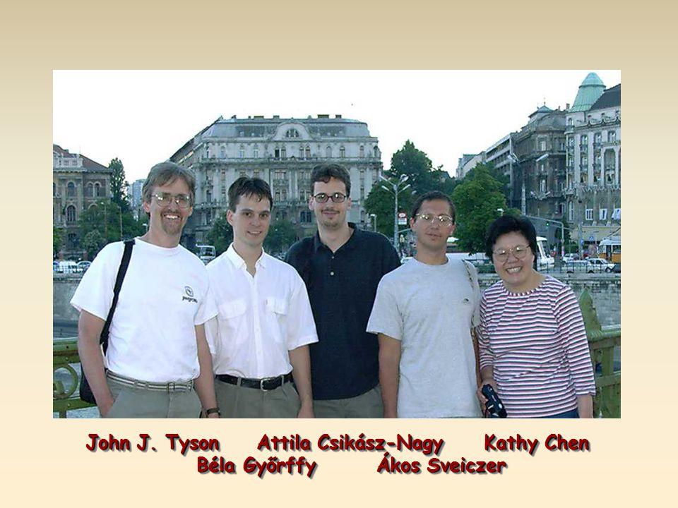 John J.Tyson Attila Csikász-Nagy Kathy Chen John J.