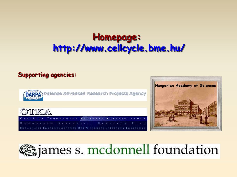 Homepage:http://www.cellcycle.bme.hu/Homepage:http://www.cellcycle.bme.hu/ Hungarian Academy of Sciences Supporting agencies: