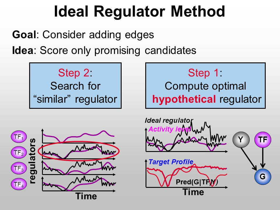 Pred(G|TF,Y) Ideal regulator Time Pred(G|TF) TF G Y Step 1: Compute optimal hypothetical regulator Time regulators Step 2: Search for similar regulator TF 1 TF 2 TF 3 TF 4 Activity level Target Profile Ideal Regulator Method Goal: Consider adding edges Idea: Score only promising candidates