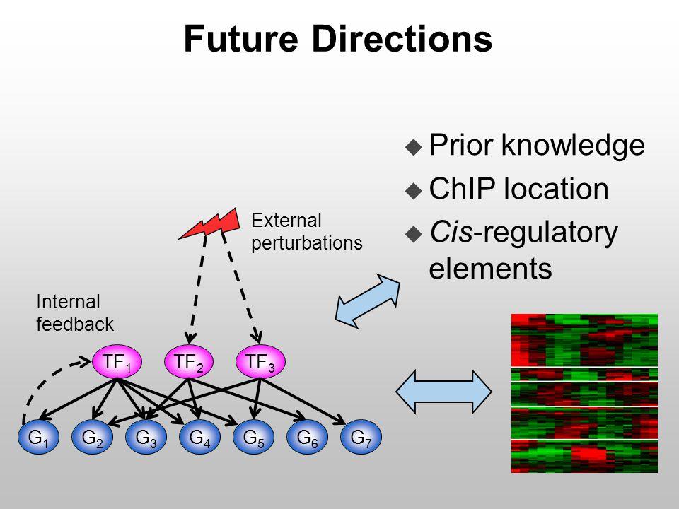 Future Directions u Prior knowledge u ChIP location u Cis-regulatory elements External perturbations Internal feedback G4G4 TF 2 TF 1 G3G3 G2G2 G1G1 TF 3 G5G5 G6G6 G7G7