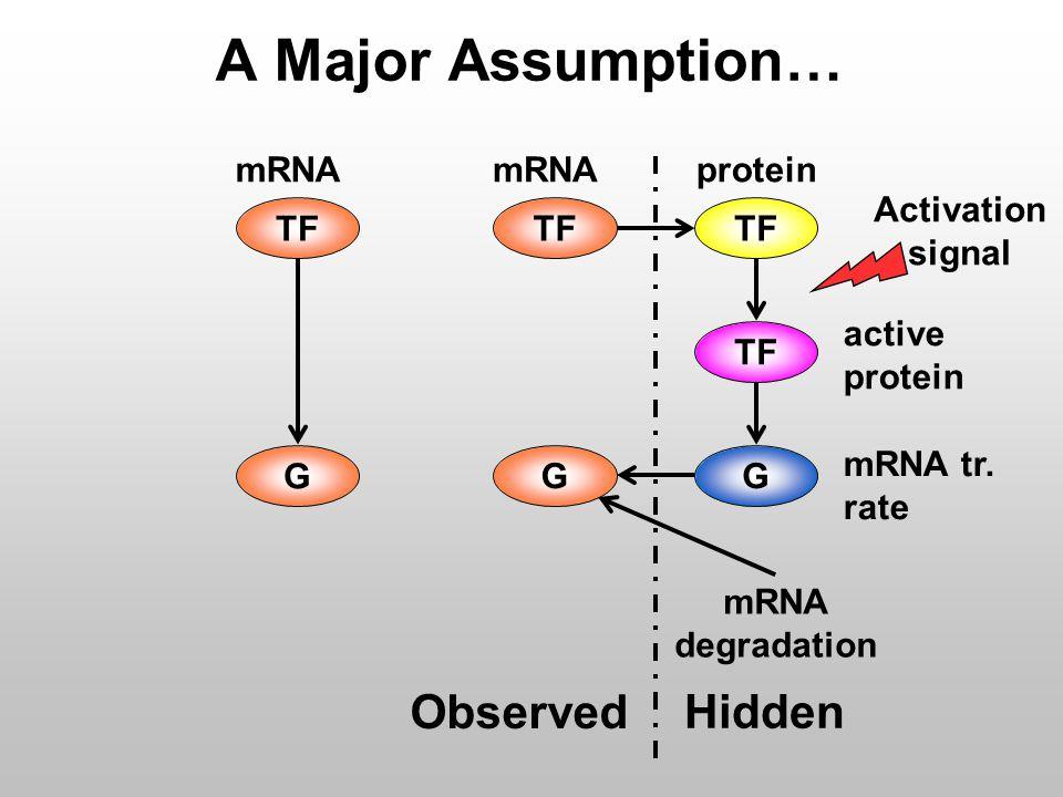 A Major Assumption… mRNA tr.
