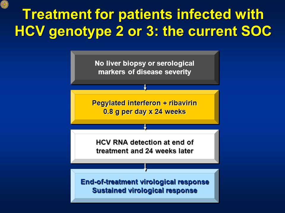 Treatment for patients infected with HCV genotype 2 or 3: the current SOC End-of-treatment virological response Sustained virological response End-of-