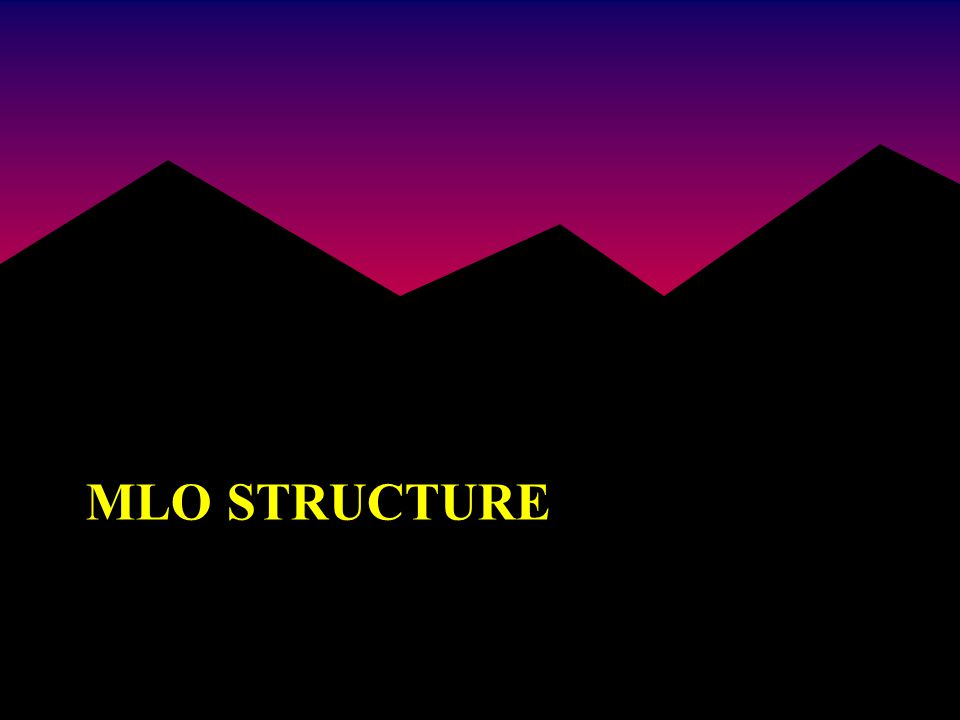 MLO STRUCTURE