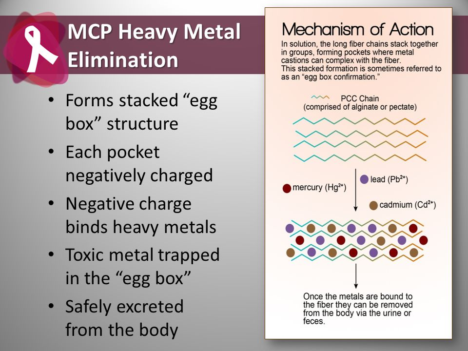 "Forms stacked ""egg box"" structure Each pocket negatively charged Negative charge binds heavy metals Toxic metal trapped in the ""egg box"" Safely excret"