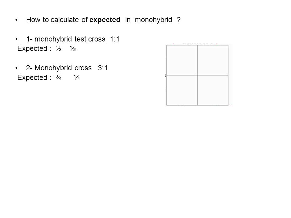 How to calculate of expected in monohybrid .