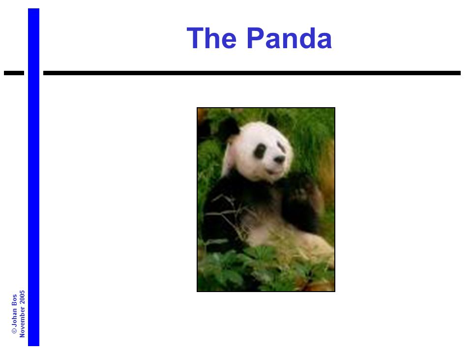 © Johan Bos November 2005 The Panda
