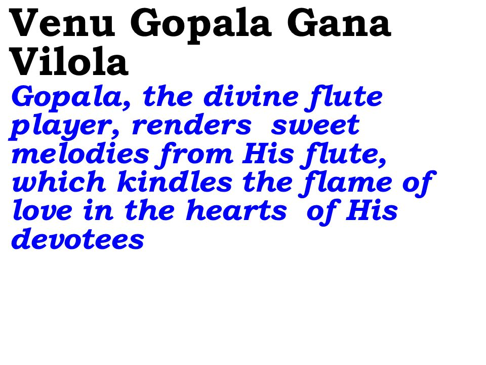 Venu Gopala Gana Vilola Gopala, the divine flute player, renders sweet melodies from His flute, which kindles the flame of love in the hearts of His devotees