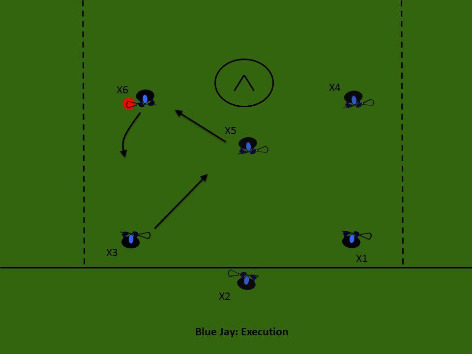 Blue Jay: Execution X6 X4 X5 X3 X1 X2