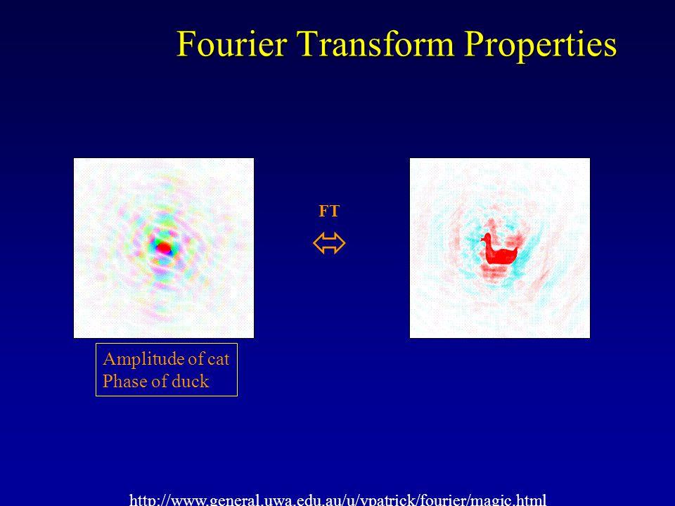Fourier Transform Properties http://www.general.uwa.edu.au/u/vpatrick/fourier/magic.html Amplitude of duck Phase of cat FT 