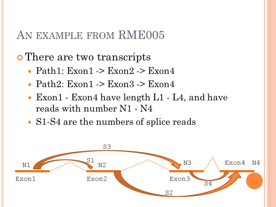 A N EXAMPLE FROM RME005 There are two transcripts Path1: Exon1 -> Exon2 -> Exon4 Path2: Exon1 -> Exon3 -> Exon4 Exon1 - Exon4 have length L1 - L4, and have reads with number N1 - N4 S1-S4 are the numbers of splice reads Exon1Exon2Exon3 Exon4 N1 N4N3 N2 S1 S2 S3 S4