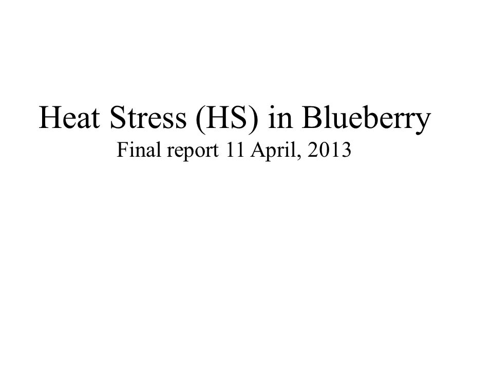 Heat Stress (HS) in Blueberry Final report 11 April, 2013
