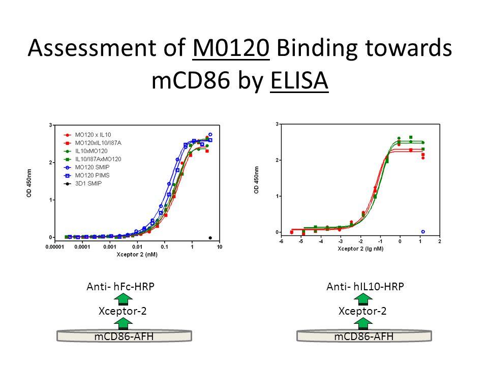 Assessment of M0120 Binding towards mCD86 by ELISA mCD86-AFH Xceptor-2 Anti- hFc-HRP mCD86-AFH Xceptor-2 Anti- hIL10-HRP