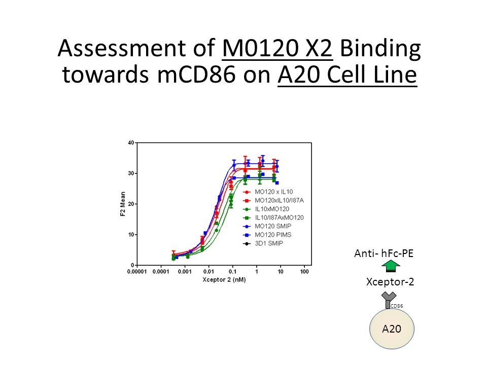 Assessment of M0120 X2 Binding towards mCD86 on A20 Cell Line Xceptor-2 Anti- hFc-PE A20 CD86