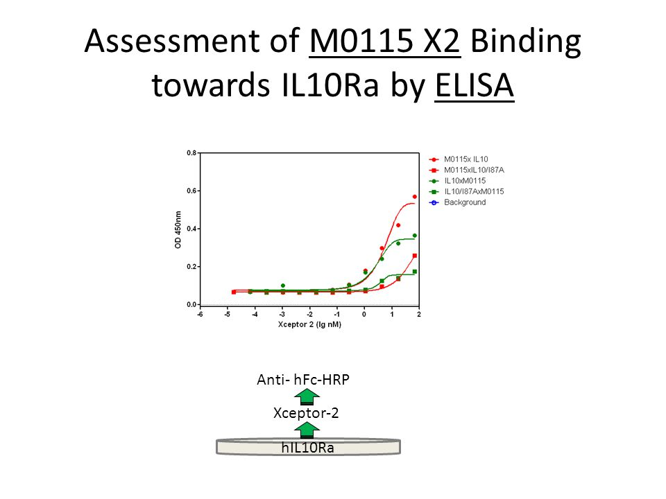 pSTAT3 activation Cell line Selection – WIL2S has few IL10R expressed: – HUVEC cell line: Eur J Immunol.