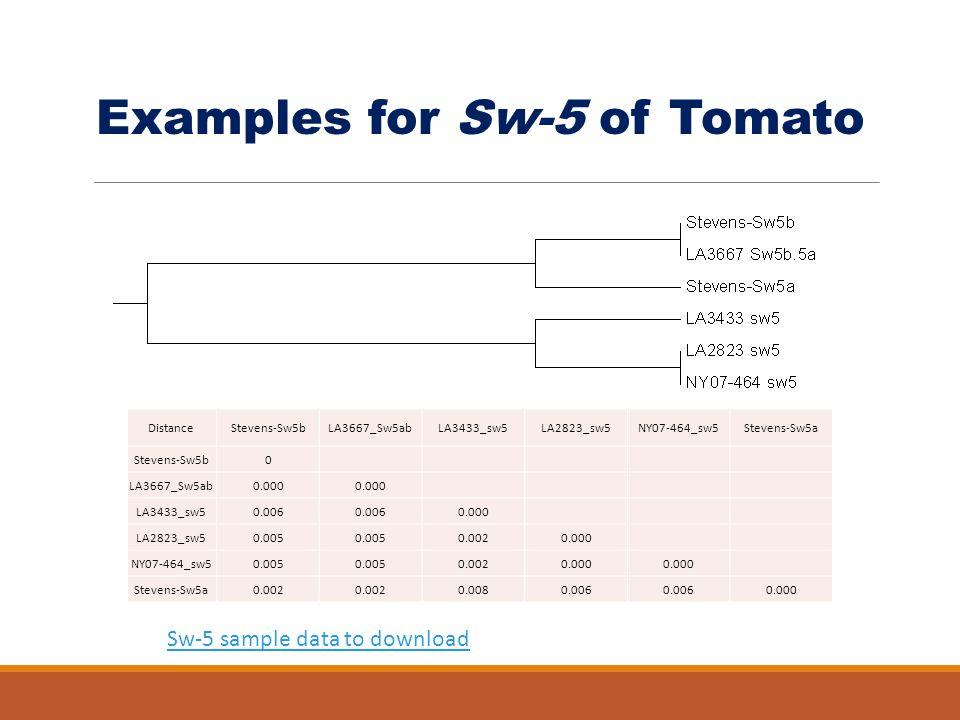 Examples for Sw-5 of Tomato DistanceStevens-Sw5bLA3667_Sw5abLA3433_sw5LA2823_sw5NY07-464_sw5Stevens-Sw5a Stevens-Sw5b0 LA3667_Sw5ab0.000 LA3433_sw50.0
