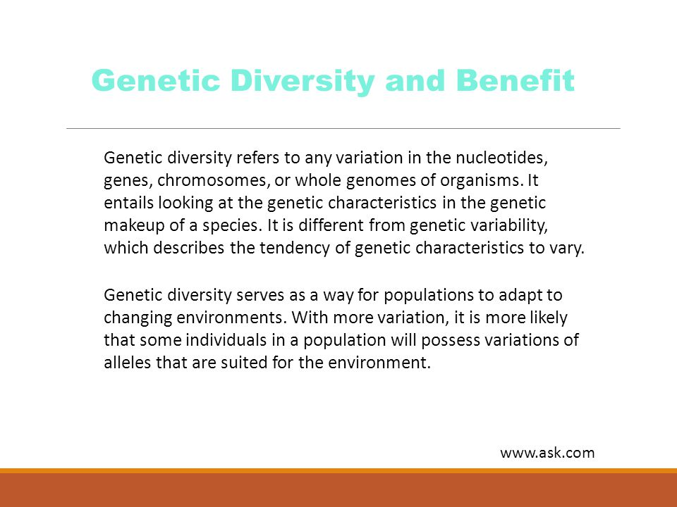 Genetic diversity refers to any variation in the nucleotides, genes, chromosomes, or whole genomes of organisms. It entails looking at the genetic cha