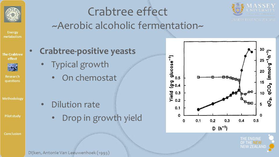 Aerobic Chemostat Culture Controlled culture in Bioreactor