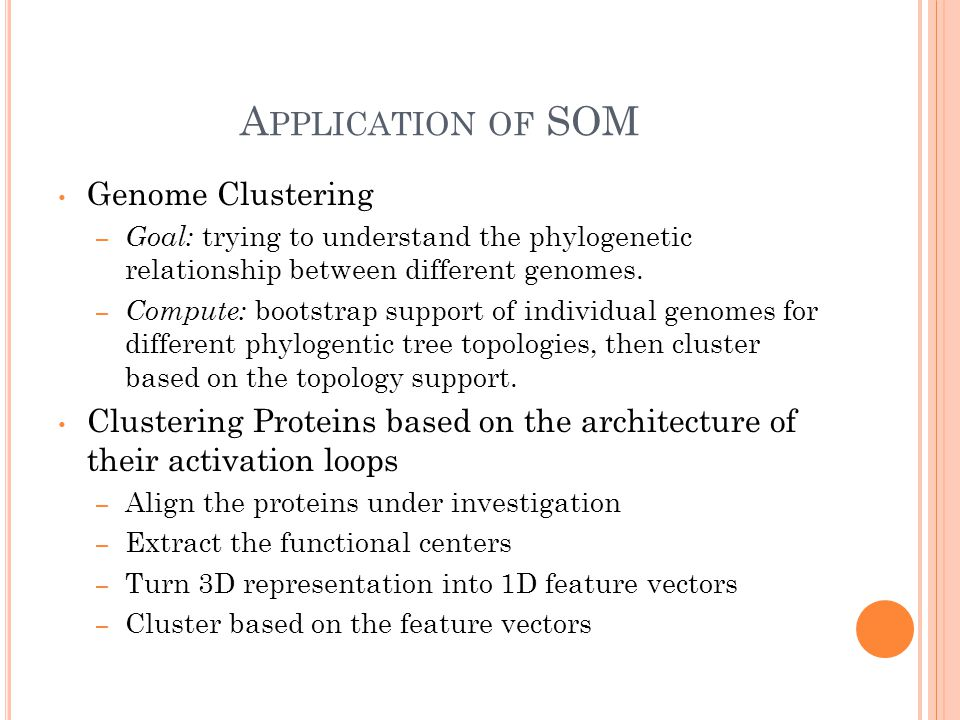 A PPLICATION OF SOM Genome Clustering – Goal: trying to understand the phylogenetic relationship between different genomes.