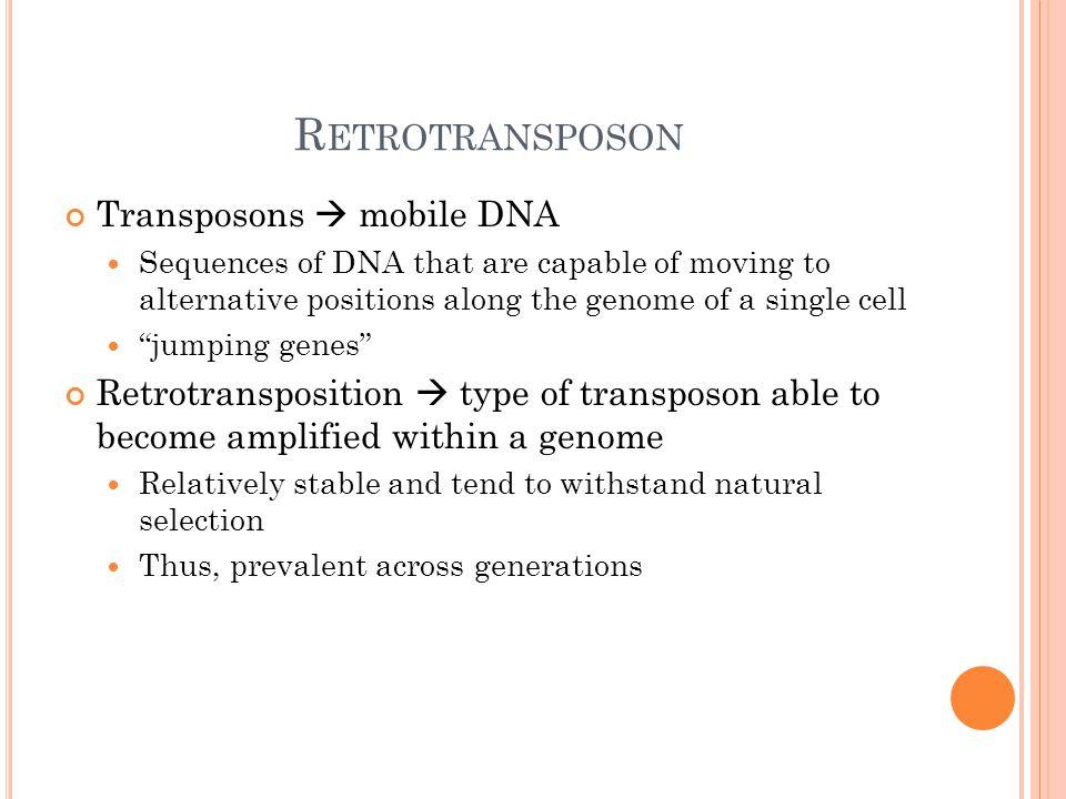 C ONTENTS 1 Overview of Gene Clustering: Biological Definitions 2 Algorithmic Methodologies 3 Software – Cluster 3 Program 4 Case Study / Article Overview