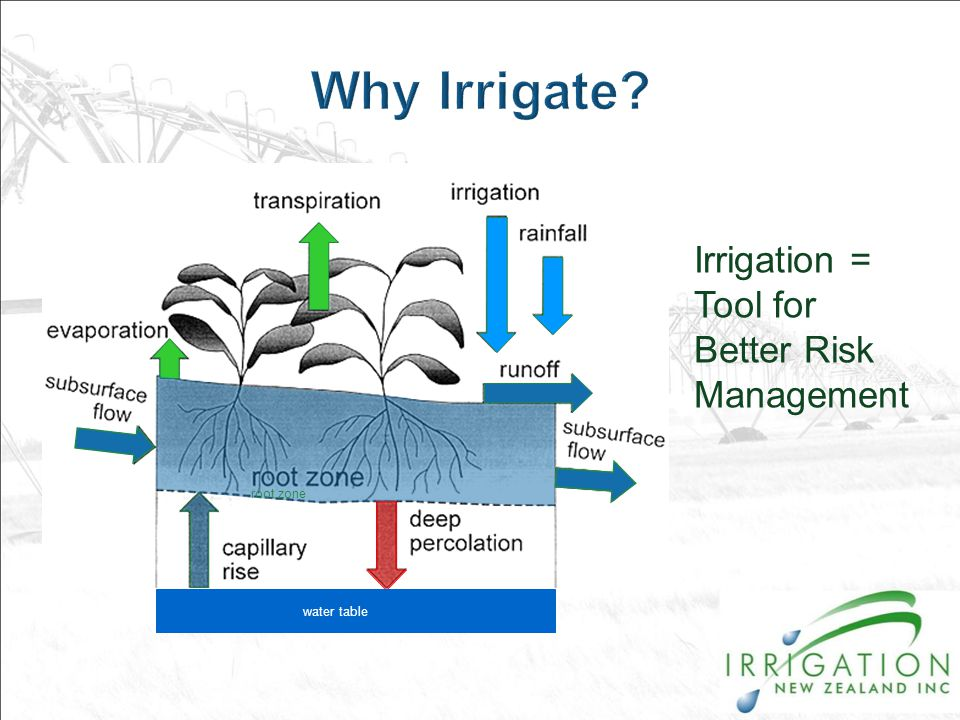 water table root zone Irrigation = Tool for Better Risk Management