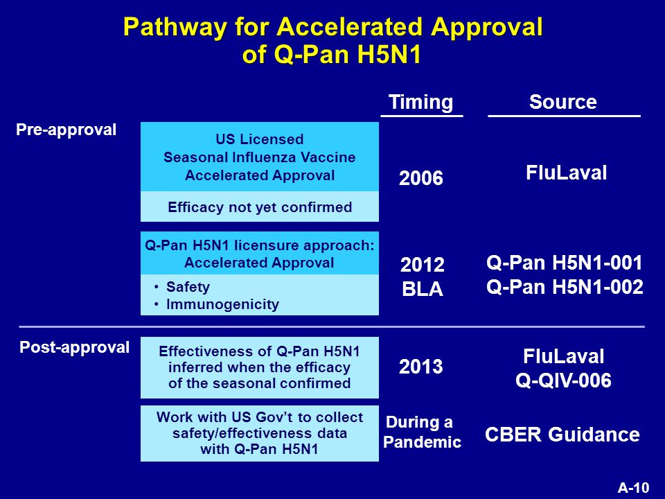 A-10 Pathway for Accelerated Approval of Q-Pan H5N1 US Licensed Seasonal Influenza Vaccine Accelerated Approval Efficacy not yet confirmed Source FluLaval Pre-approval 2006 2012 BLA 2013 During a Pandemic Timing Q-Pan H5N1 licensure approach: Accelerated Approval Safety Immunogenicity Q-Pan H5N1-001 Q-Pan H5N1-002 Effectiveness of Q-Pan H5N1 inferred when the efficacy of the seasonal confirmed FluLaval Q-QIV-006 Post-approval Work with US Gov't to collect safety/effectiveness data with Q-Pan H5N1 CBER Guidance