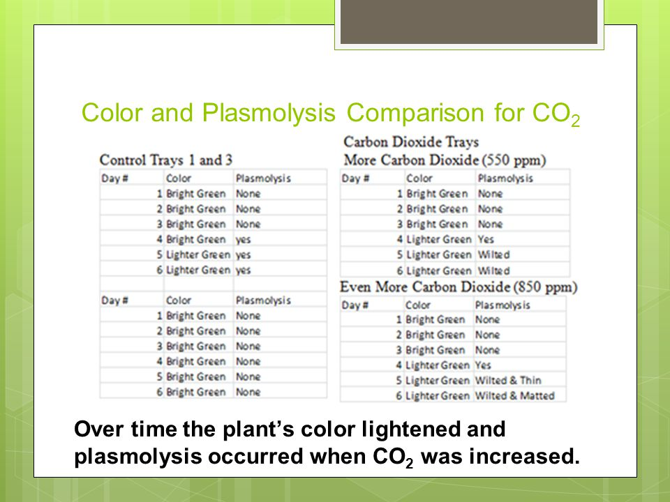 Color and Plasmolysis Comparison for CO 2 Over time the plant's color lightened and plasmolysis occurred when CO 2 was increased.