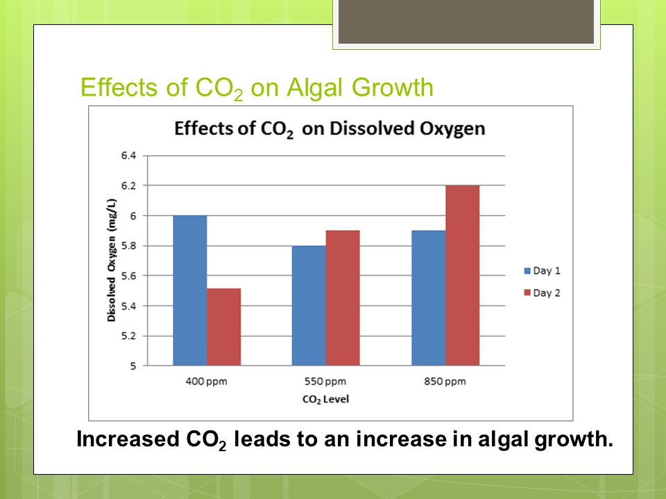Effects of CO 2 on Algal Growth Increased CO 2 leads to an increase in algal growth.