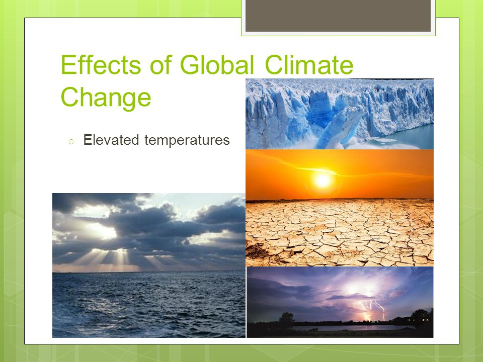 Impact of Climate Change on the Biosphere