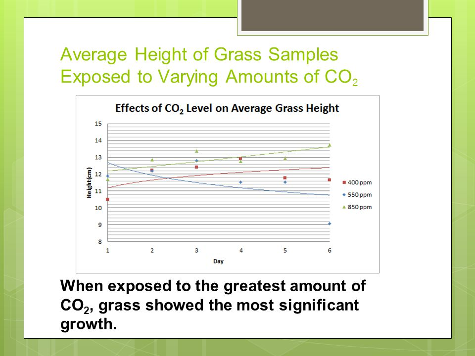 Average Height of Grass Samples Exposed to Varying Amounts of CO 2 When exposed to the greatest amount of CO 2, grass showed the most significant growth.