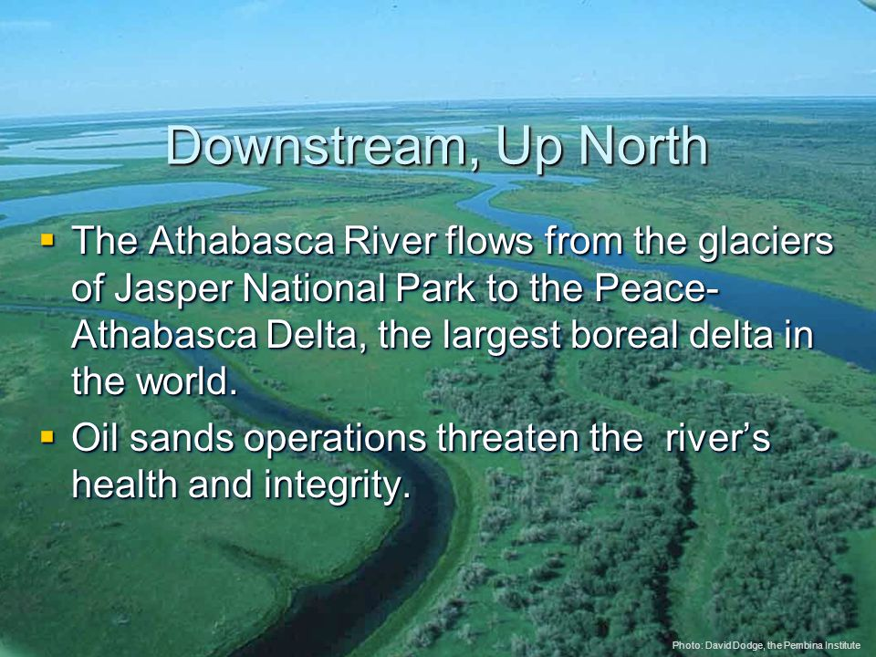 © 2005 The Pembina Institute www.pembina.org www.pembina.org Sustainable Energy Solutions Downstream, Up North  The Athabasca River flows from the glaciers of Jasper National Park to the Peace- Athabasca Delta, the largest boreal delta in the world.
