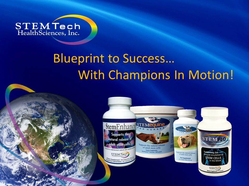 Blueprint to Success… With Champions In Motion!