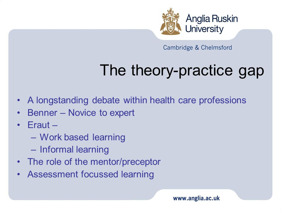 The theory-practice gap A longstanding debate within health care professions Benner – Novice to expert Eraut – –Work based learning –Informal learning The role of the mentor/preceptor Assessment focussed learning