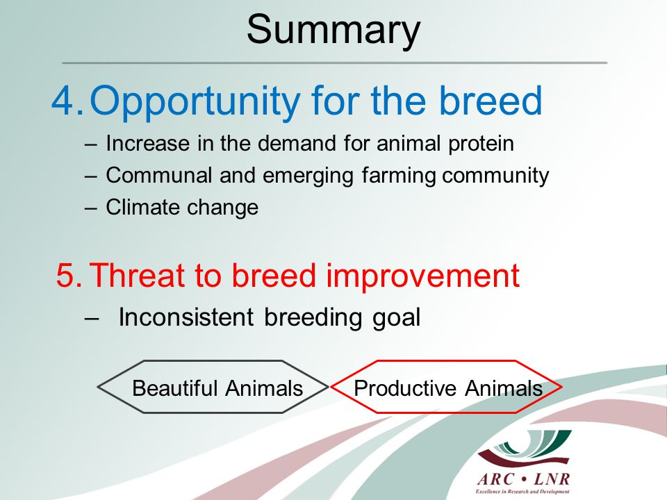 Summary 4.Opportunity for the breed –Increase in the demand for animal protein –Communal and emerging farming community –Climate change 5.Threat to breed improvement –Inconsistent breeding goal Beautiful Animals Productive Animals