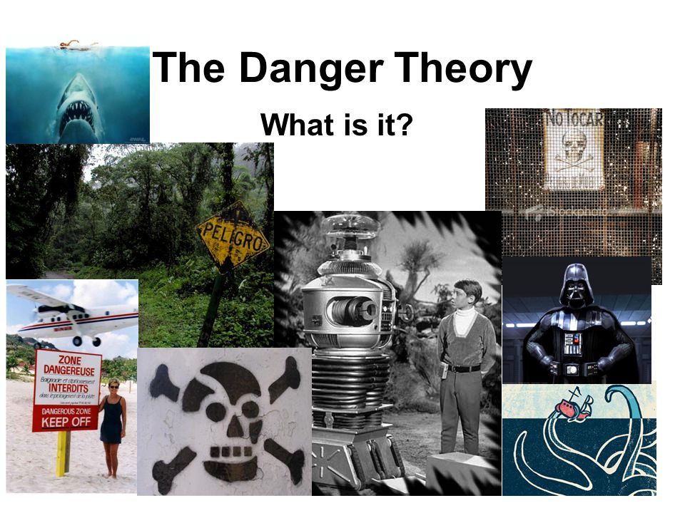 The Danger Theory What is it?