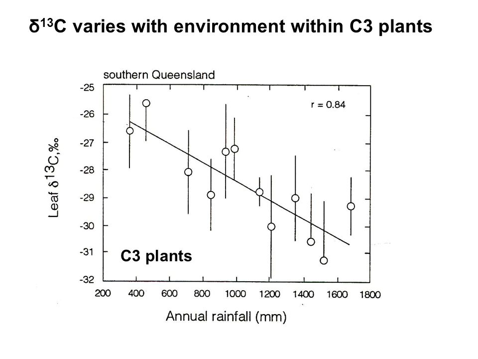 δ 13 C varies with environment within C3 plants C3 plants