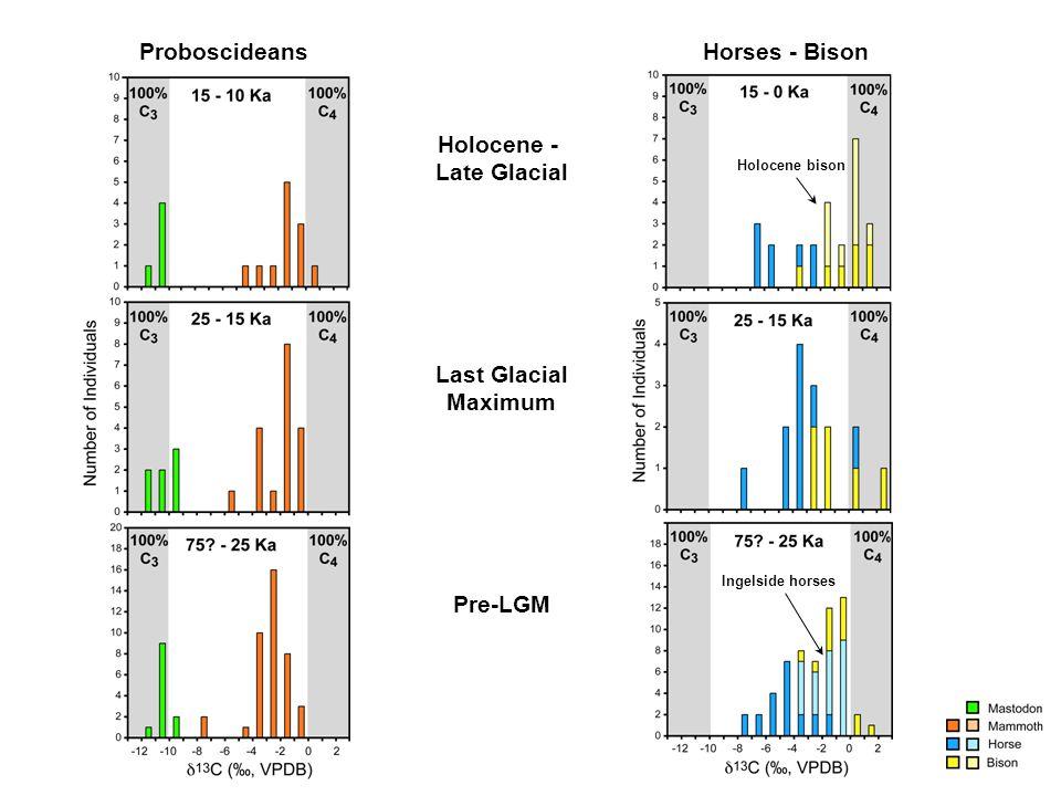 Holocene - Late Glacial Last Glacial Maximum Pre-LGM Proboscideans Holocene bison Ingelside horses Horses - Bison