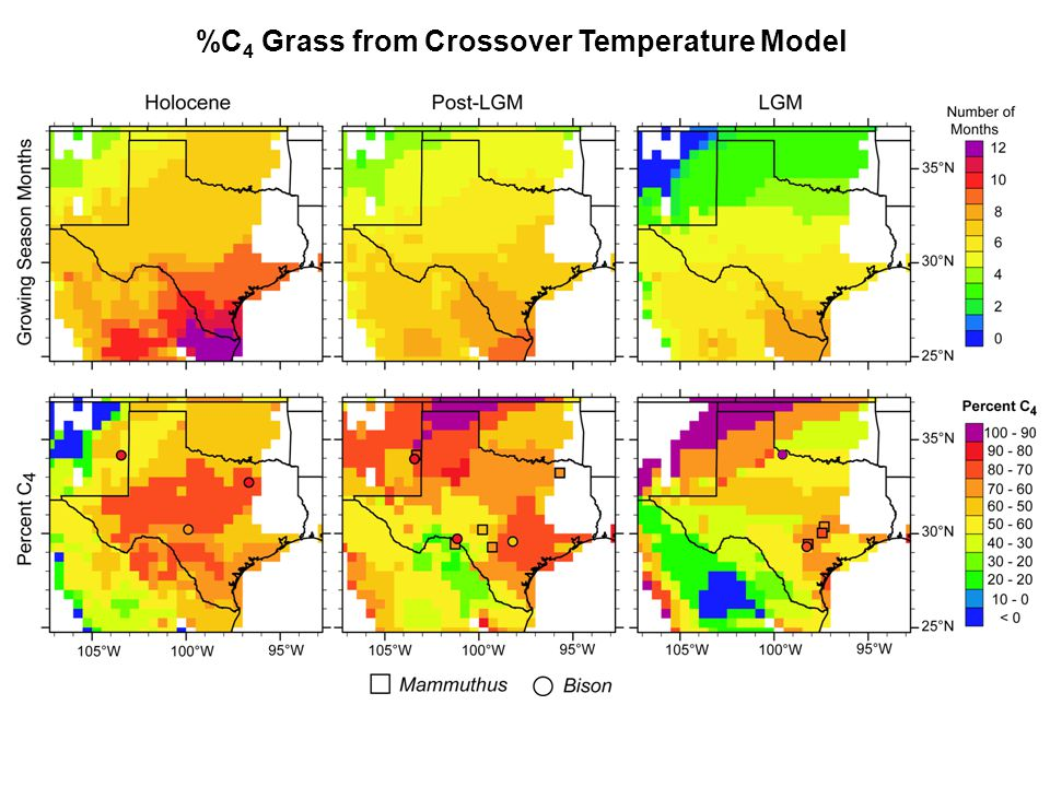 %C 4 Grass from Crossover Temperature Model