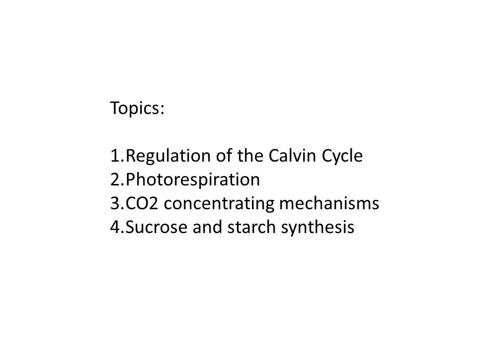 Regulation of the Calvin cycle a.RuBP activase b.Light induction of Calvin cycle gene expression c.Enzyme activites regulated by redox state of the chloroplast