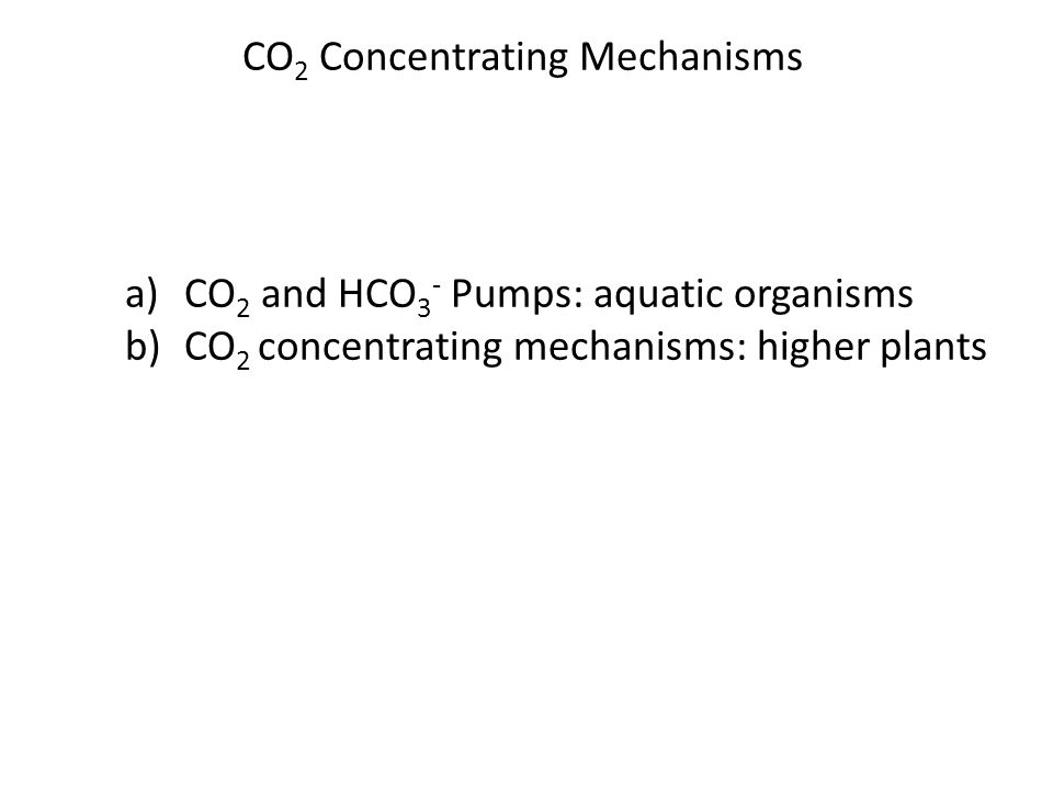 CO 2 Concentrating Mechanisms Clicker question: Is there only one type of CO2 concentrating mechanisms in higher plants.