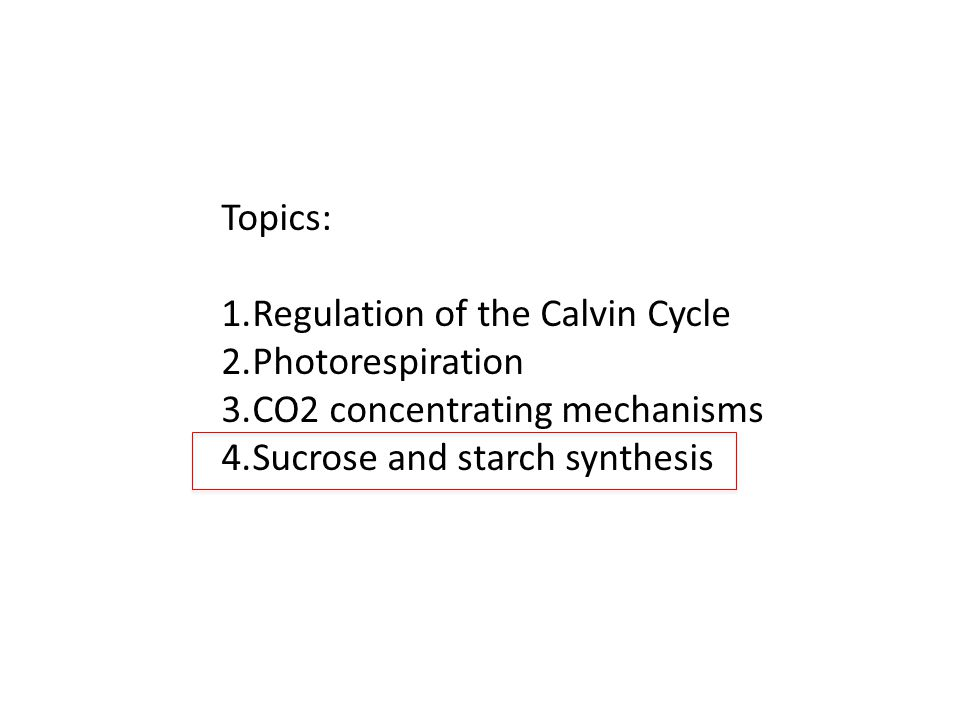 Topics: 1.Regulation of the Calvin Cycle 2.Photorespiration 3.CO2 concentrating mechanisms 4.Sucrose and starch synthesis