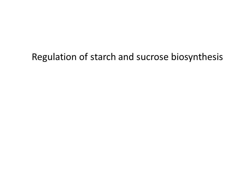 Regulation of starch and sucrose biosynthesis