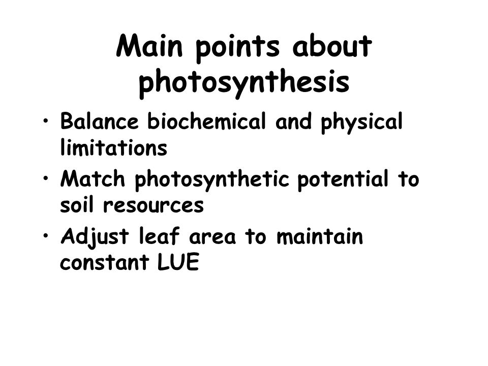 Main points about photosynthesis Balance biochemical and physical limitations Match photosynthetic potential to soil resources Adjust leaf area to maintain constant LUE