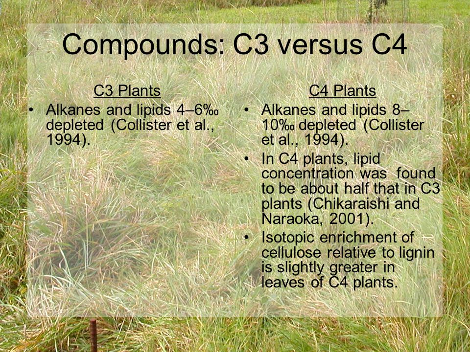 Compounds: C3 versus C4 C3 Plants Alkanes and lipids 4–6‰ depleted (Collister et al., 1994).