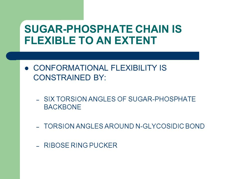 SUGAR-PHOSPHATE CHAIN IS FLEXIBLE TO AN EXTENT CONFORMATIONAL FLEXIBILITY IS CONSTRAINED BY: – SIX TORSION ANGLES OF SUGAR-PHOSPHATE BACKBONE – TORSION ANGLES AROUND N-GLYCOSIDIC BOND – RIBOSE RING PUCKER