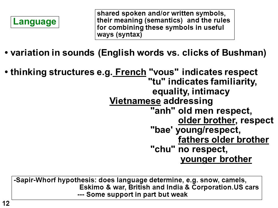 Language shared spoken and/or written symbols, their meaning (semantics) and the rules for combining these symbols in useful ways (syntax) variation in sounds (English words vs.