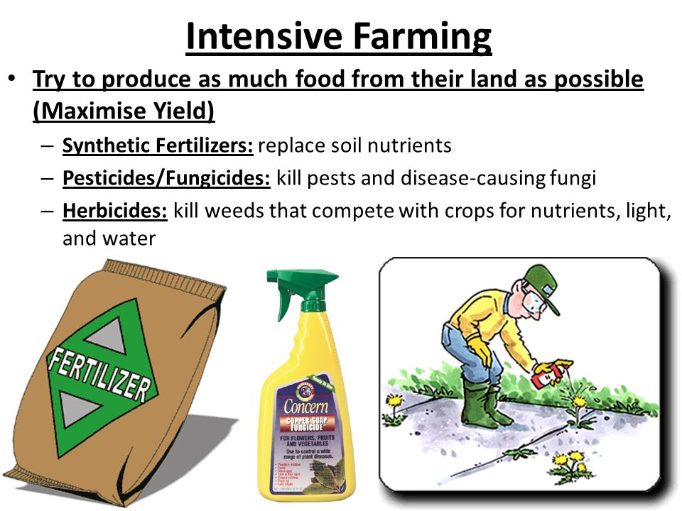 Intensive Farming Try to produce as much food from their land as possible (Maximise Yield) – Synthetic Fertilizers: replace soil nutrients – Pesticides/Fungicides: kill pests and disease-causing fungi – Herbicides: kill weeds that compete with crops for nutrients, light, and water