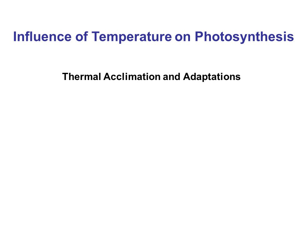 Influence of Temperature on Photosynthesis Thermal Acclimation and Adaptations
