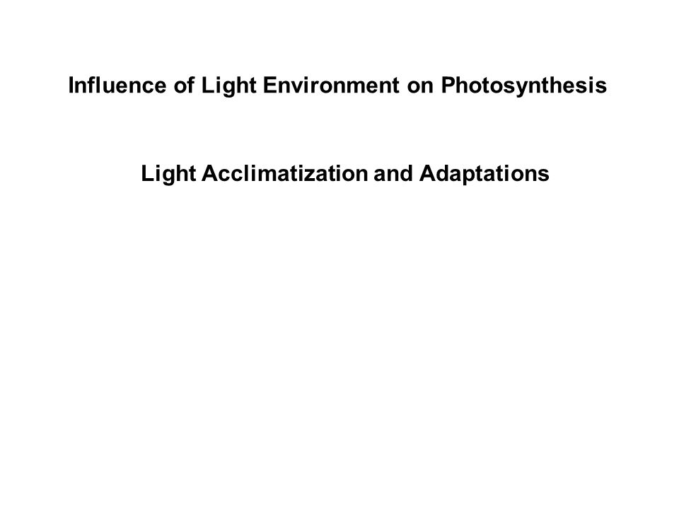 The above diagram compares C4 and CAM C4 photosynthesis.