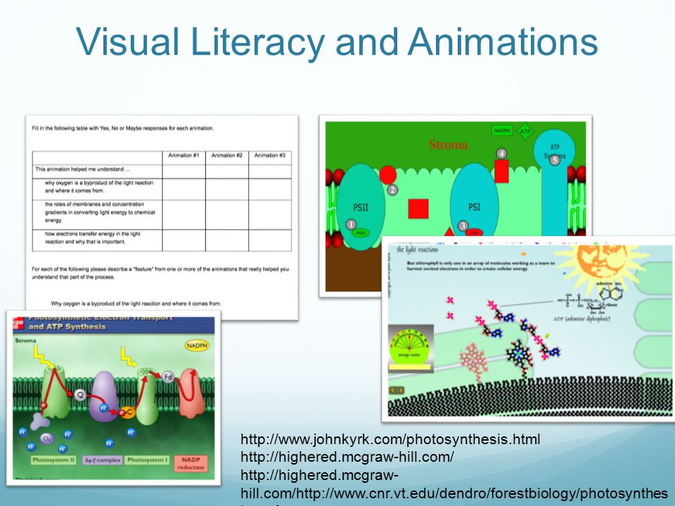 Visual Literacy and Animations http://www.johnkyrk.com/photosynthesis.html http://highered.mcgraw-hill.com/ http://highered.mcgraw- hill.com/http://ww